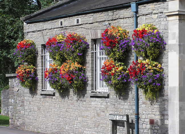 Hanging_baskets_in_thornbury_arp