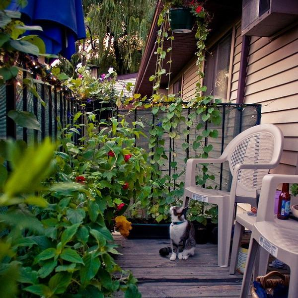 balcony-designs-decorating-with-flowers-plants-4