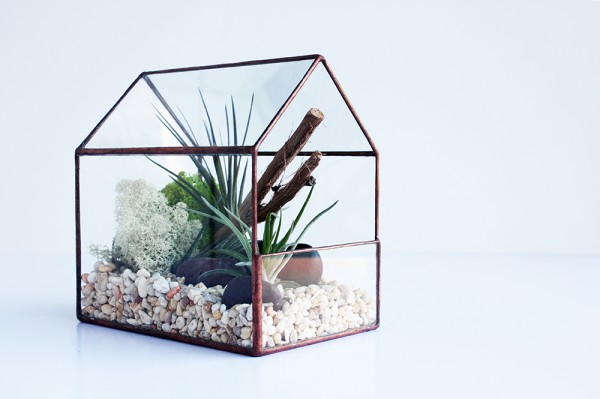 HOUSE_TERRARIUM_CROWN+FLORA